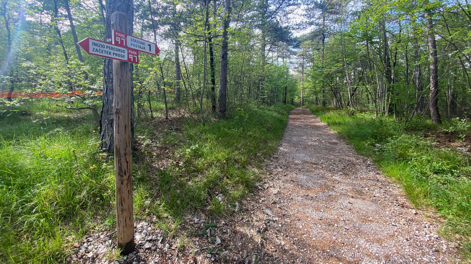 Il Parco 97 è un percorso della Grande Guerra inaugurato nell'estate del 2017 nel Bosco Fornace di Prosecco (Comune di Trieste), sul ciglione del Carso a poca distanza dal celebre Castello di Miramare.